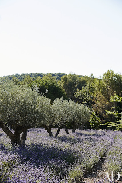 French Country in Provence | Frédéric Fekkai's Gorgeous Vacation Home in the South of France