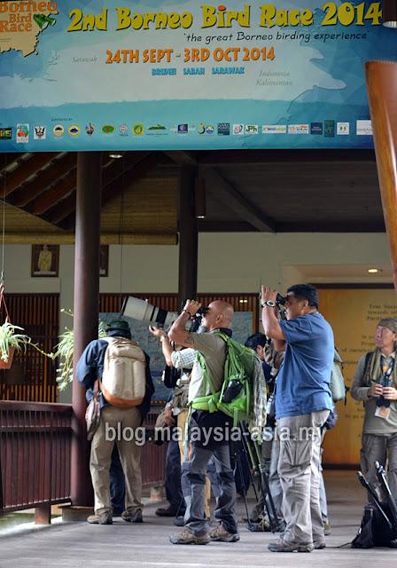 Bird Watching in Sarawak