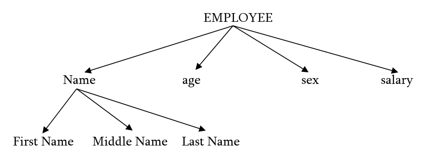 Amazing What Is Tree In Data Structure Explain Different Types Of Trees Short Hairstyles For Black Women Fulllsitofus