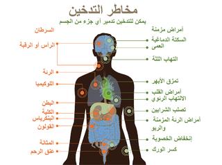 أضرار التدخين على صحة الإنسان