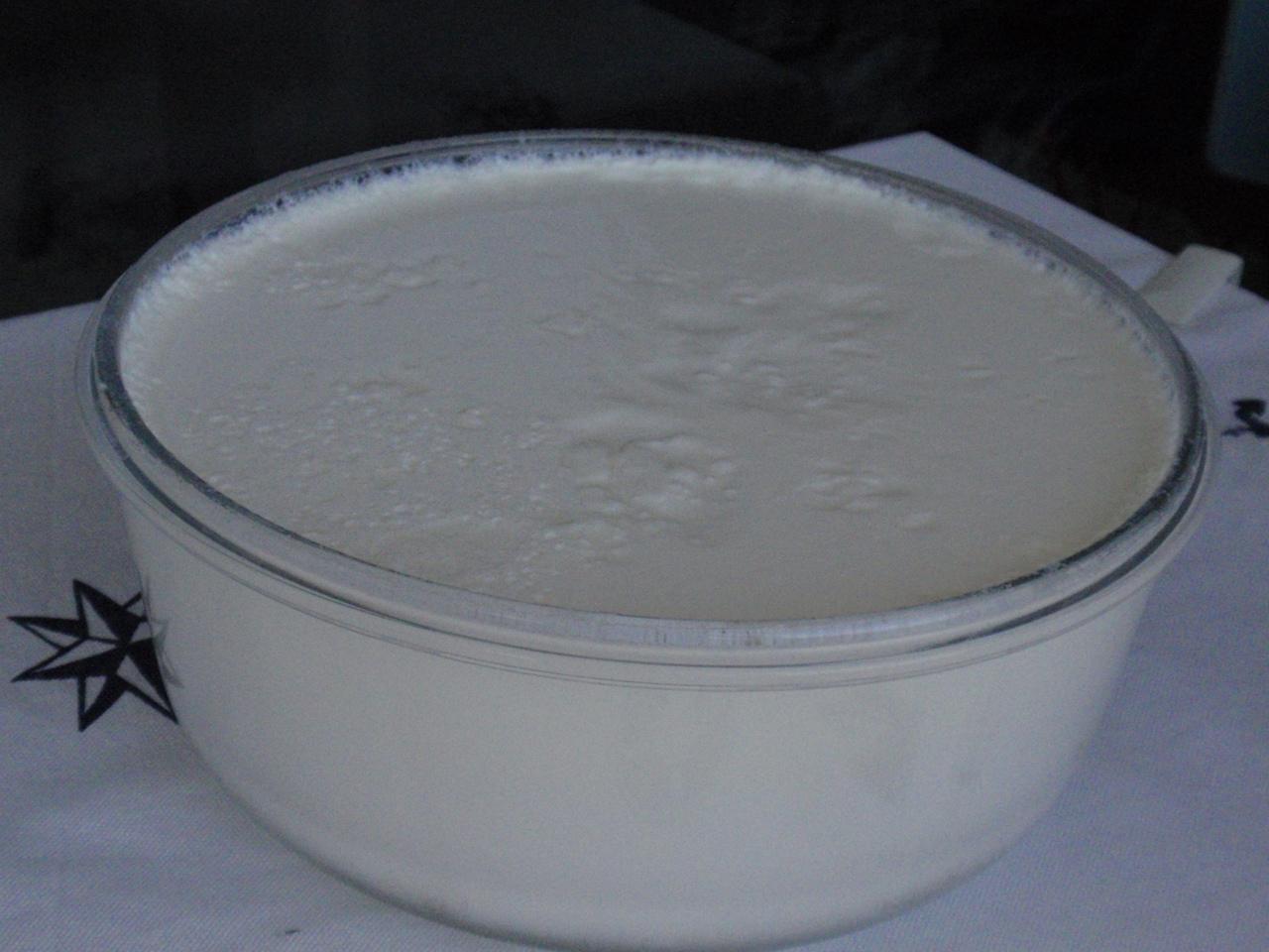 Evde yoğurt yapımı