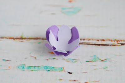 Cánh hoa cẩm tú cầu so le
