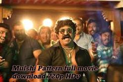 Mulshi Pattern full movie download 720p HD