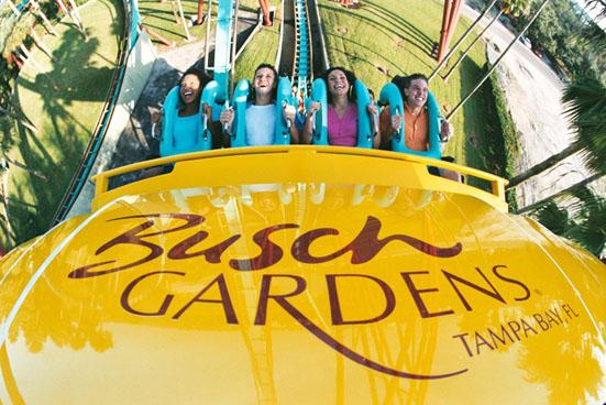 Aluguel de carro em Tampa - Parque Busch Gardens
