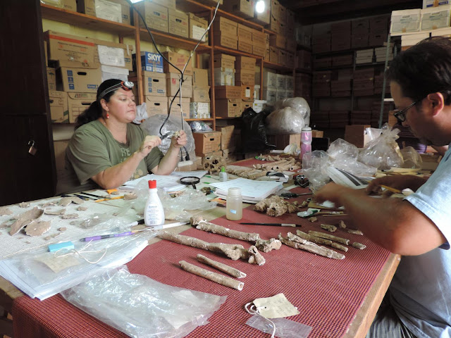Dental remains shed light on ancient people and culture of Oaxaca's Lower Rio Verde Valley