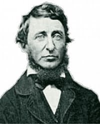 July memory of Henry David Thoreau