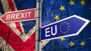 Pengertian Referendum dan Macam-Macam Referendum
