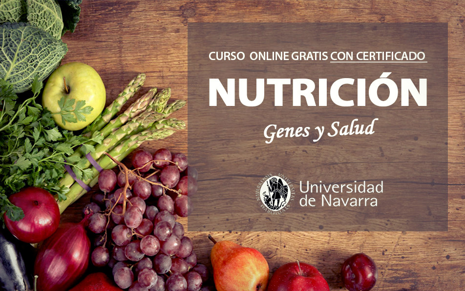 curso nutricion gratis pdf