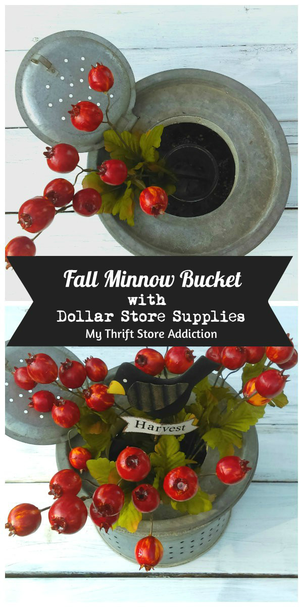 5 minute fall minnow bucket