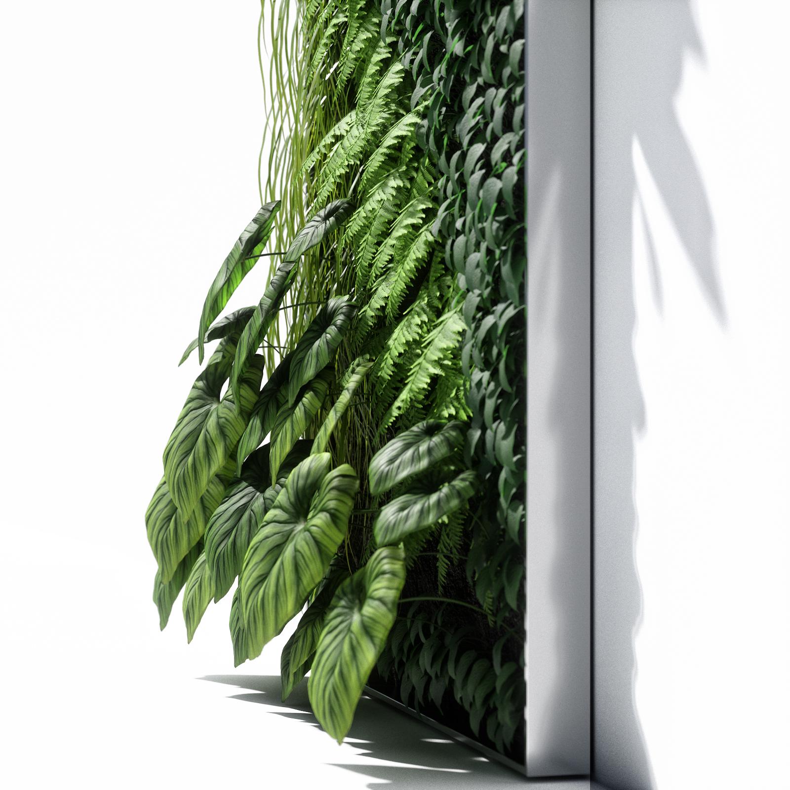 3d модели Растения Vertical Garden 02