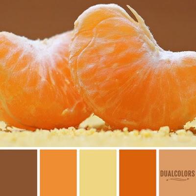 Color Paleta 149