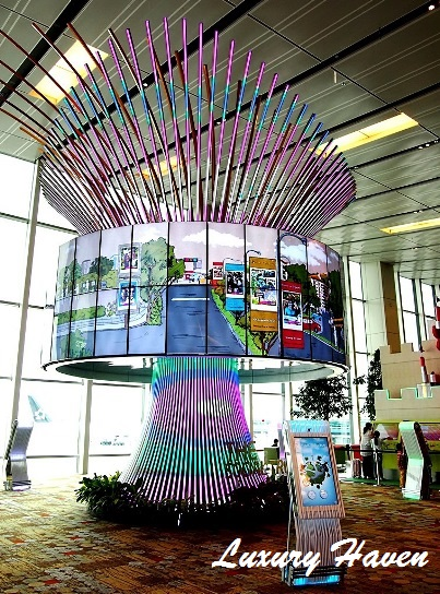 singapore changi airport social tree