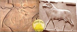 عبادة الكبش والكبش منديس