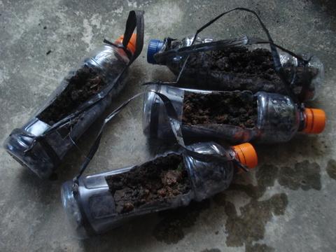 HIJAU LESTARI Cara Memanfaatkan Botol botol plastik bekas