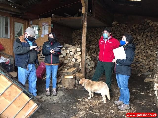 Osorno: inscriben a comerciantes de leña en el registro de la comuna