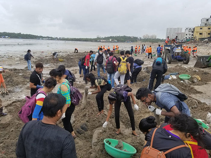 The World's Largest Beach Cleanup Project In India Restored Our Faith In Humanity By Bringing Back Turtles After Decades