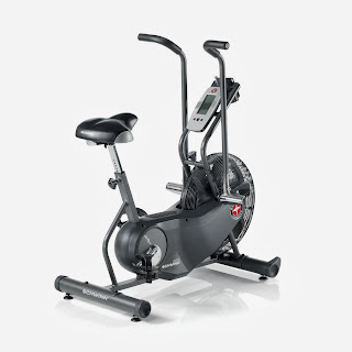 Schwinn AD6 Airdyne Exercise Bike, image, review features & specifications plus compare with AD Pro and AD2