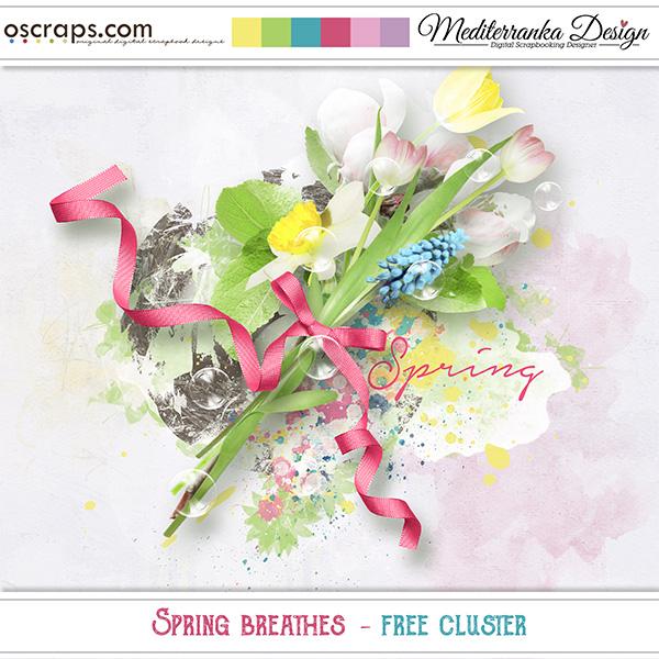 https://3.bp.blogspot.com/-0MU8wxnAdaA/Vvl_zlI0YgI/AAAAAAAAFSg/iq0loe2sd8MiZXQcHHAJWnLxyxhr3juSA/s1600/Mediterranka_SpringBreathes_freecluster_pv.jpg