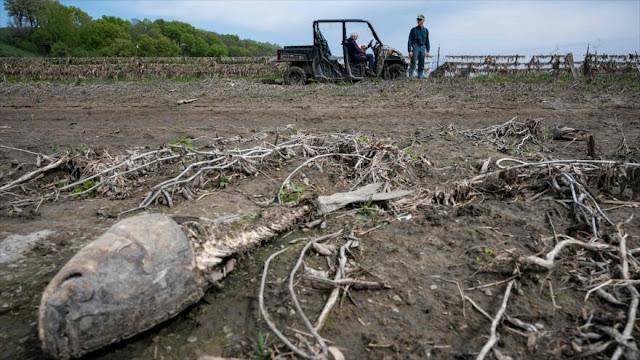 """ONU alerta: La Tierra """"no va por buen camino"""" en cambio climático"""