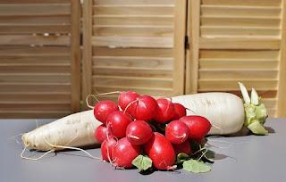 health-benefit-of-radish