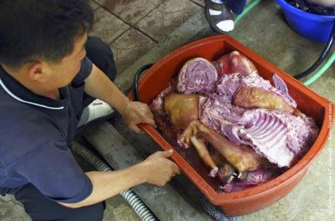 Bosintang / Sub Daging Anjing
