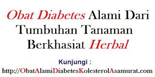 Obat Diabetes alami dari Tumbuhan Tanaman berkhasiat herbal