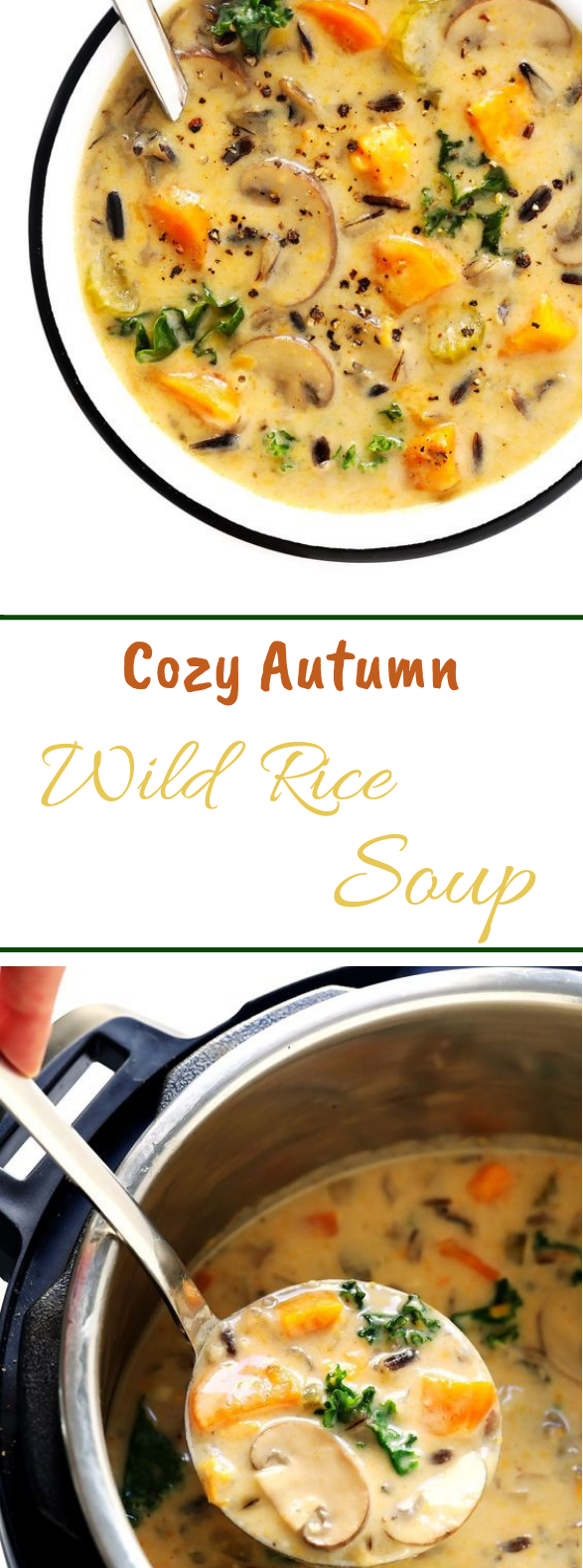 Cozy Autumn Wild Rice Soup #dinner #soup
