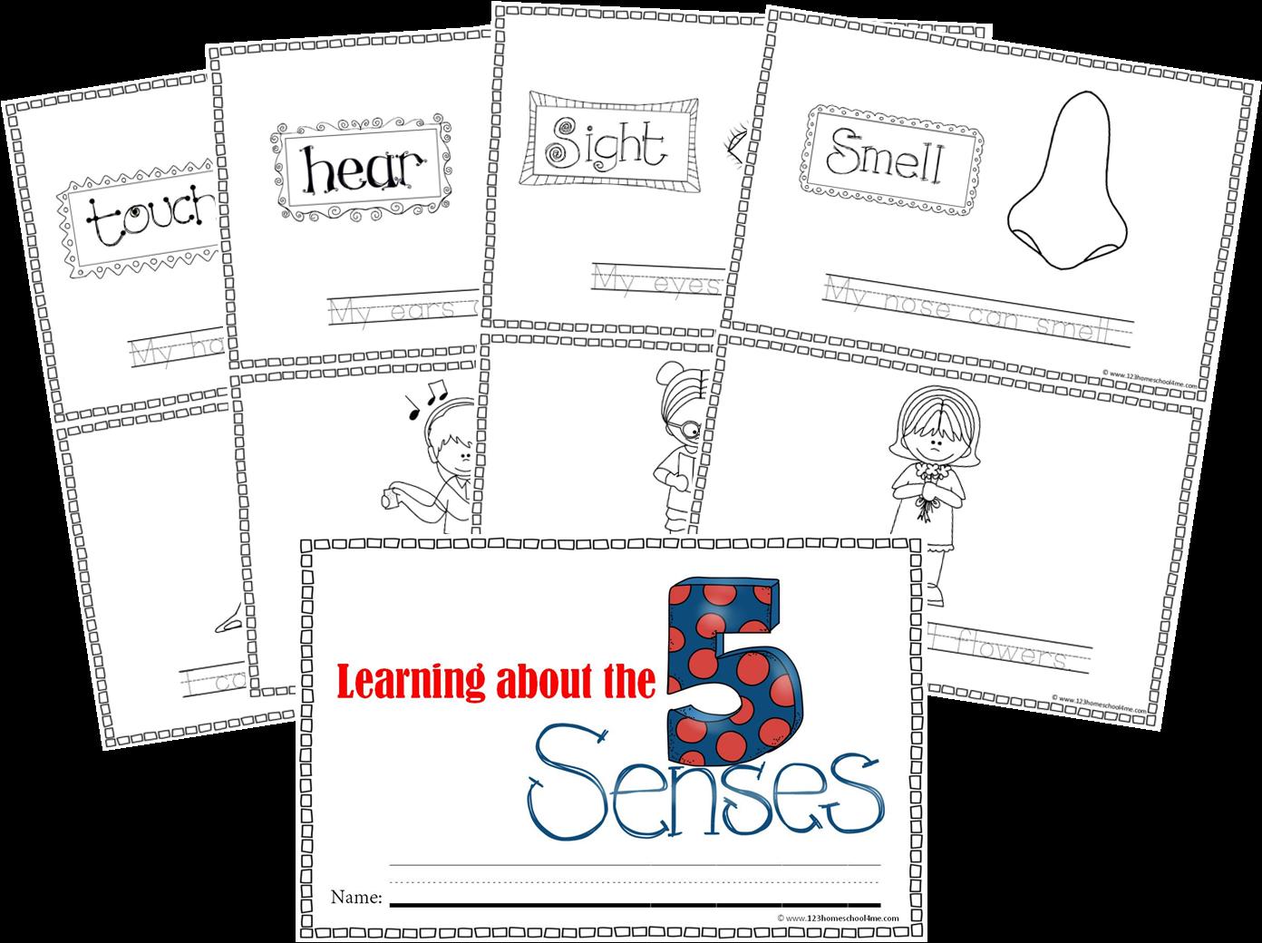 5 Senses Mini Book