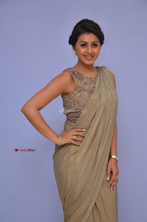Nikki Galrani in Saree 114.JPG