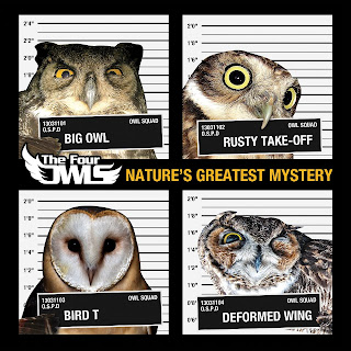 Resultado de imagen para The Four Owls - Nature's Greatest Mystery