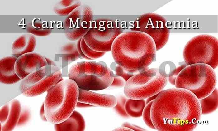 mengobati anemia