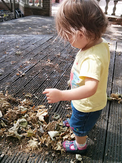 youngest sweeping leaves