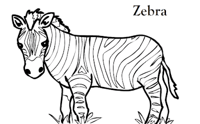 Gambar Mewarnai Zebra - 3