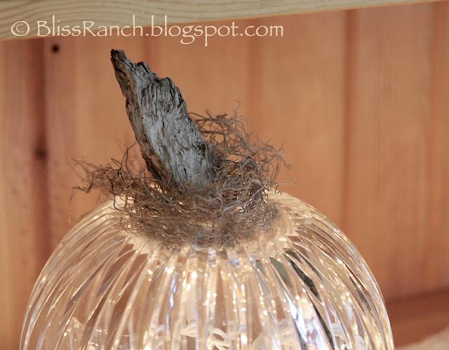 Bliss-Ranch.com Glass Light Globe Pumpkins