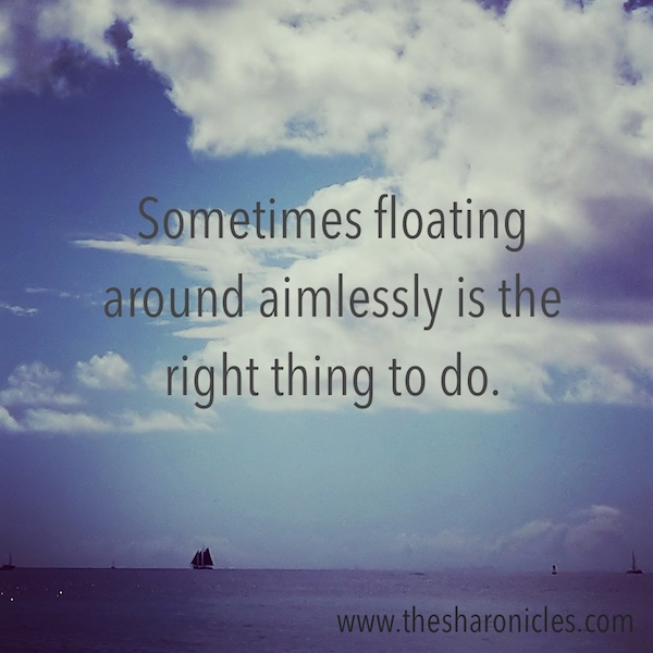 Inspirational cruise ship quote 'Sometimes floating around aimlessly is the right thing to do'