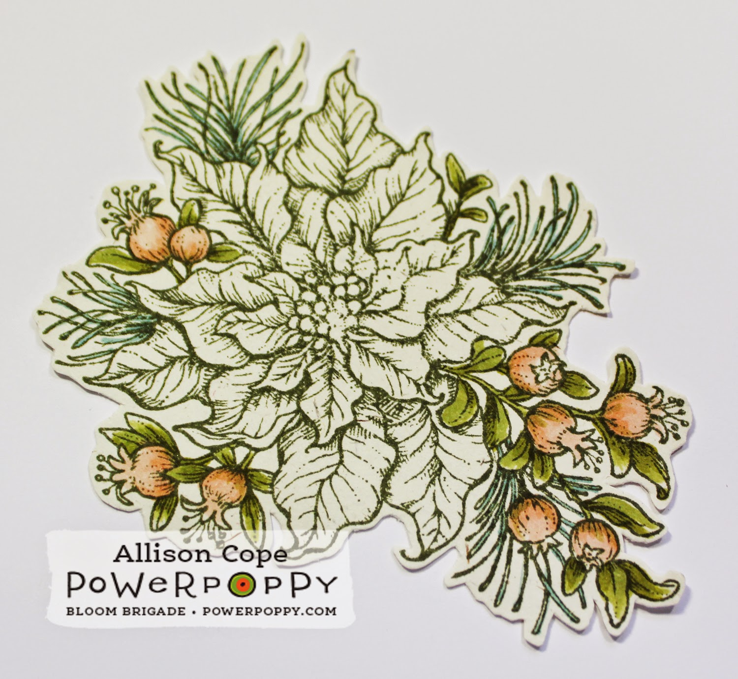 Power Poppy paper piecing tutorial Poinsettia