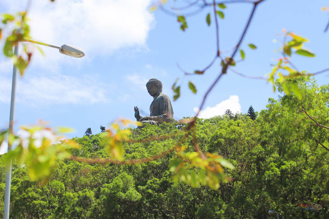 Big Buddha in Ngong Ping Village, Hong Kong