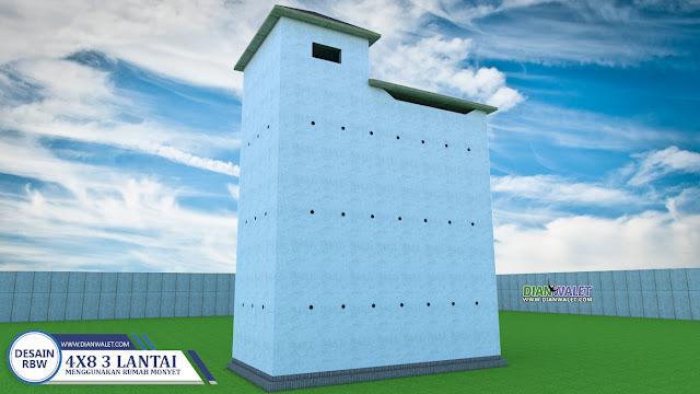 Desain Rumah Burung Walet 4x8 3 Lantai Premium