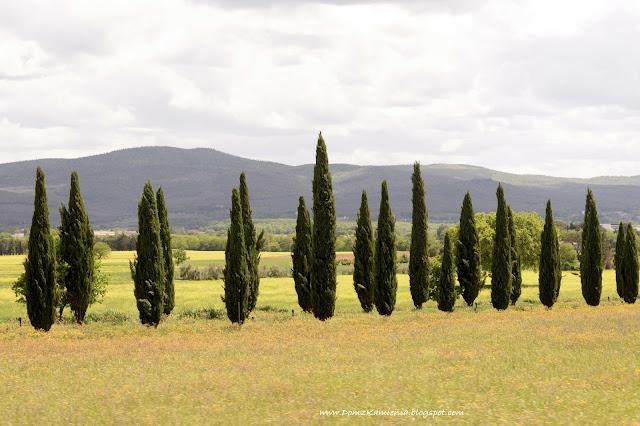 krajobraz Chianti