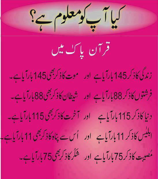 Slot meaning in urdu