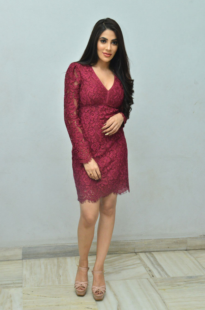 NIkki Tamboli sizzling Pics in Deep neck Maroon Gown at Chikati Gadhilo Chithakottudu movie Success Meet