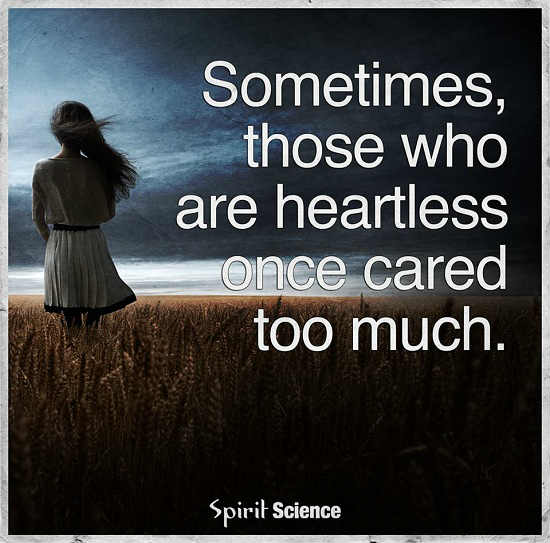 Sometimes Those Who Are Heartless Once Cared Too Much 101 Quotes