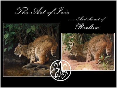 oil painting of bobcat and the original photo used to paint it by Barbara Ivie Green