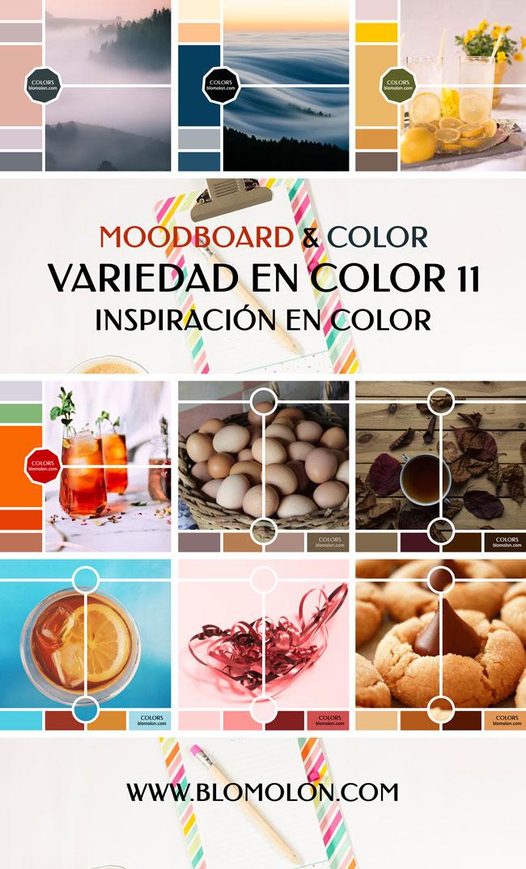 variedad_en_color_blomolon_10