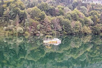 parco dolomiti bellunesi lago stua