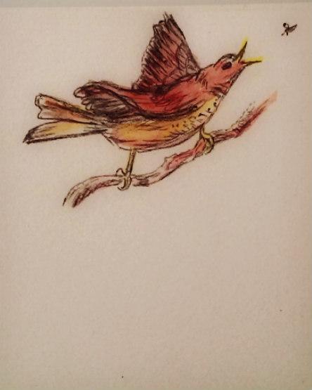 Doodled bird