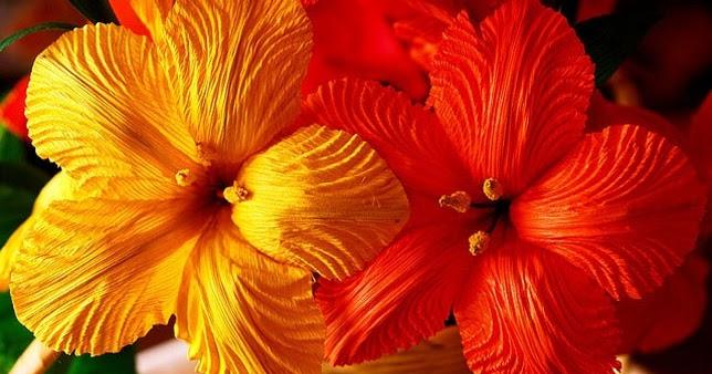 Bunga Dari Kulit Jagung Dan Cara Membuatnya Bab 2 Bunga Sepatu Blogcampduan