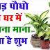 ज्योतिष टिप्स: घर में जरूर लगाने चाहिए ये पौधे, घर में होती है बरकत