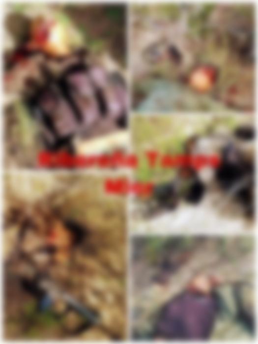 Cartel del Golfo embosca a Sicarios del Cartel del Noroeste y los mata cerca de CD Mier