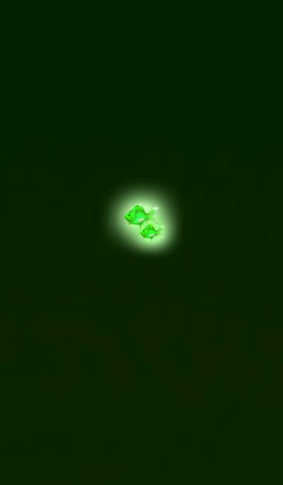 Mini goldfish in the dark night Green